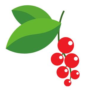 Фото №6 - Гадание на ягодках: Что ждет тебя в скором времени? 🍒🍓