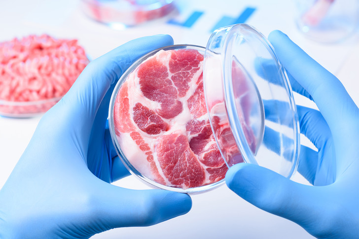 Фото №1 - Котлета денег: из чего делают искусственное мясо и почему оно так дорого стоит
