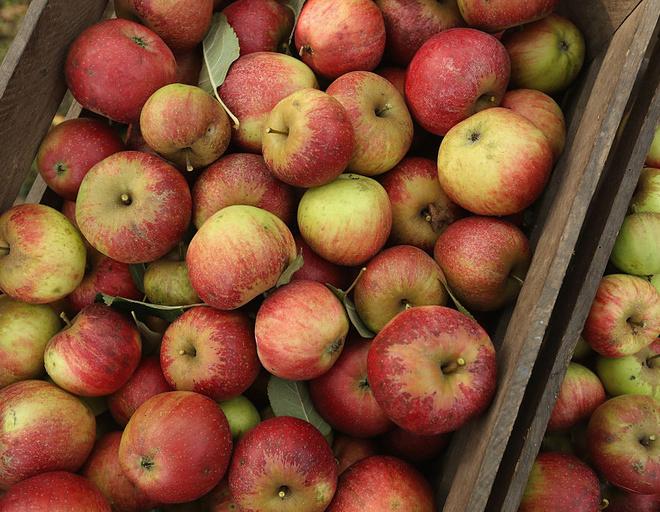 Куриная печень с яблоками