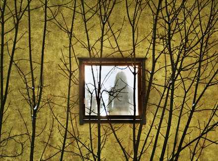 Портрет на фоне деревьев