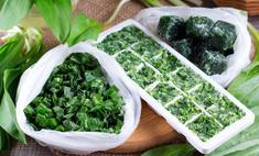 Как заморозить зеленый лук: 3 быстрых и проверенных способа