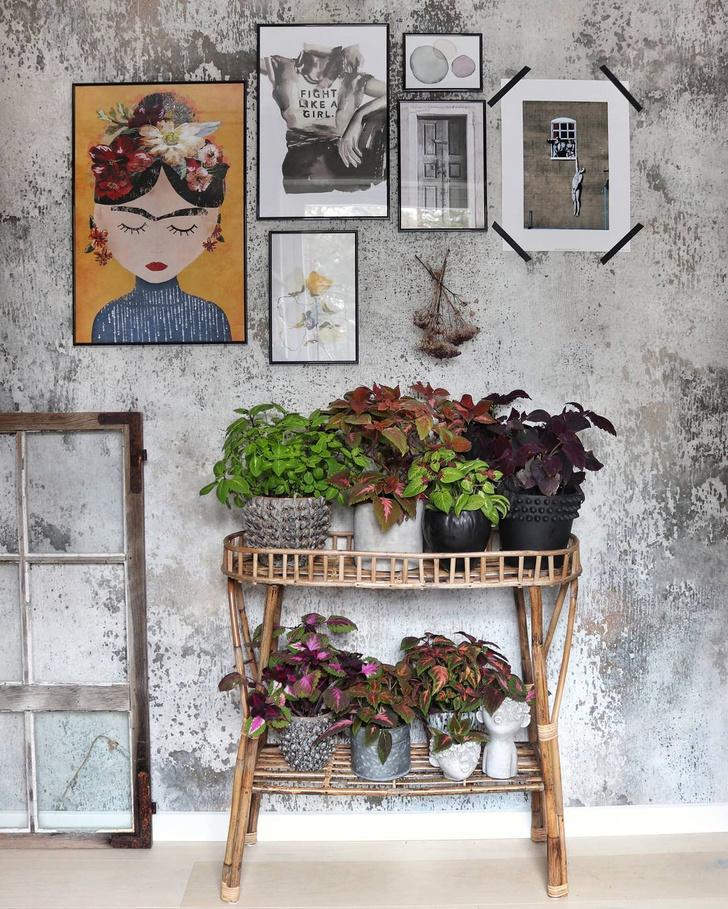 Фото №2 - Вопросы читателей: как создать осенью уют в доме