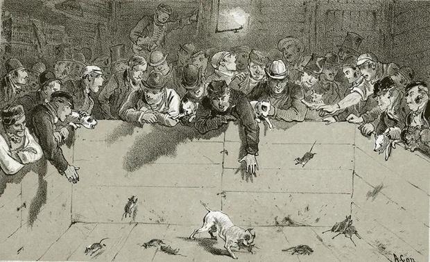 Фото №4 - Клоачный кладоискатель и еще 6 самых жутких профессий викторианской эпохи