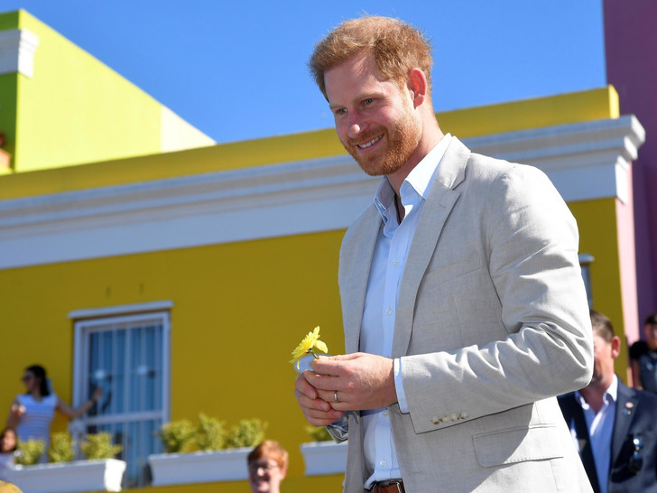 Фото №3 - Сомнительные привилегии: ради чего принц Гарри может отказаться от всех титулов