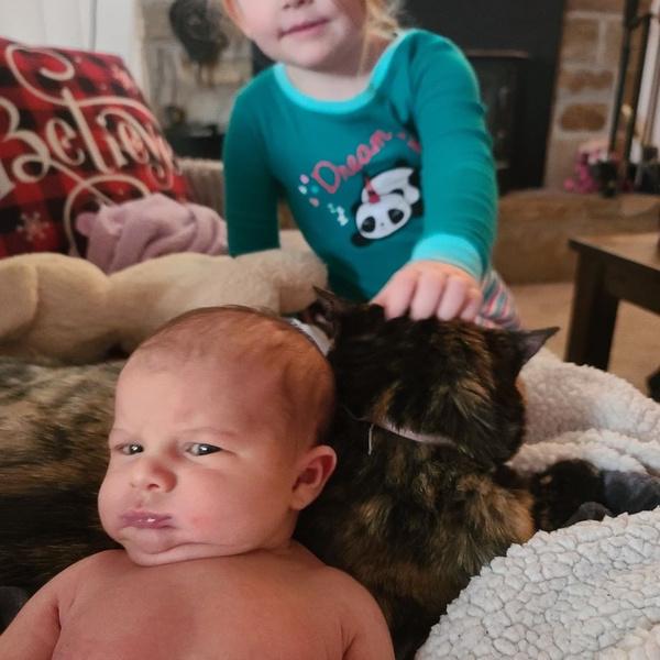 Фото №3 - Вовсе не ангелочки: как на самом деле выглядят новорожденные