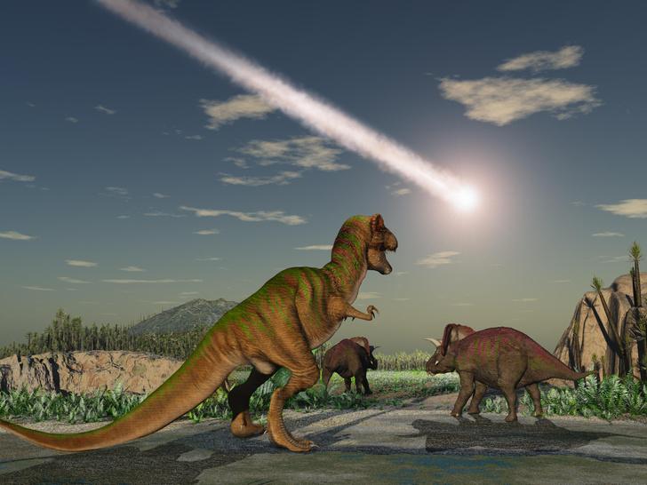 Фото №1 - Откуда прилетел астероид, погубивший динозавров