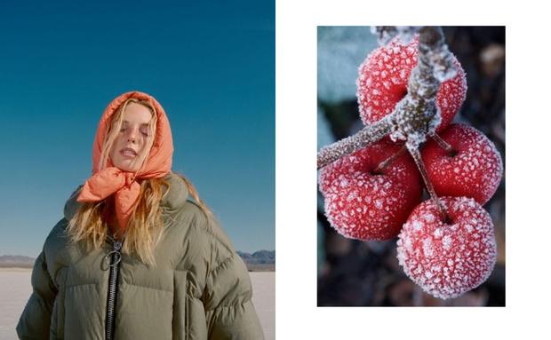Фото №5 - Что происходит с телом, когда на улице очень холодно