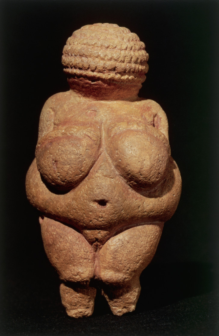 Фото №2 - Эволюция женской груди: от палеолитической Венеры до наших дней