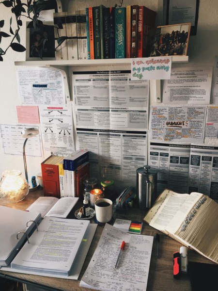 Фото №1 - В школах России планируют ввести уроки информационной грамотности