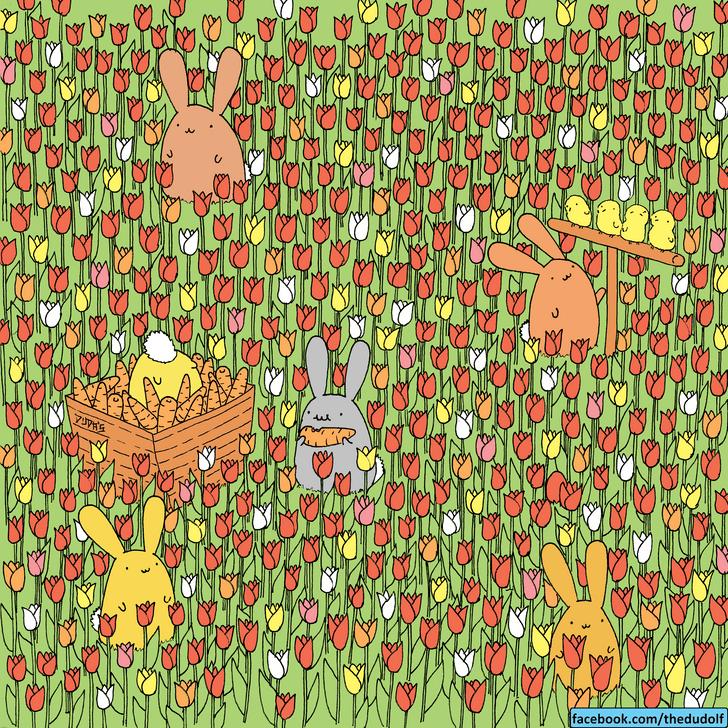 Фото №1 - Загадка, над которой придется неслабо побиться: где яйцо?
