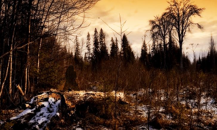 Фото №1 - Самые страшные и аномальные места России 💀