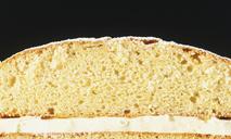 Легкий и вкусный торт с медом