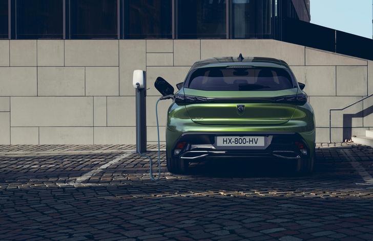 Фото №6 - Peugeot представила хетчбэк гольф-класса лучше самого «Гольфа»