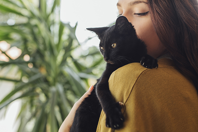 Фото №2 - Кошкины слезки: почему у питомца постоянно мокрые глаза