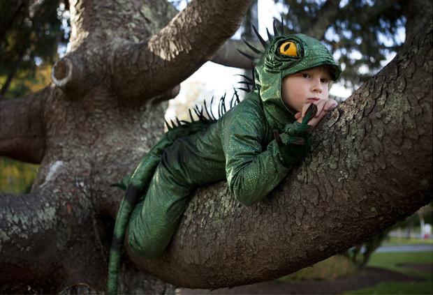 Фото №3 - Из мира животных: детские имена одной тематики