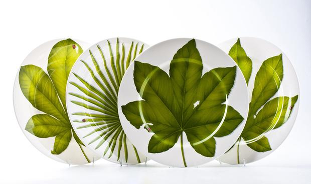 Фото №4 - Зеленый цвет в интерьере: советы по декору