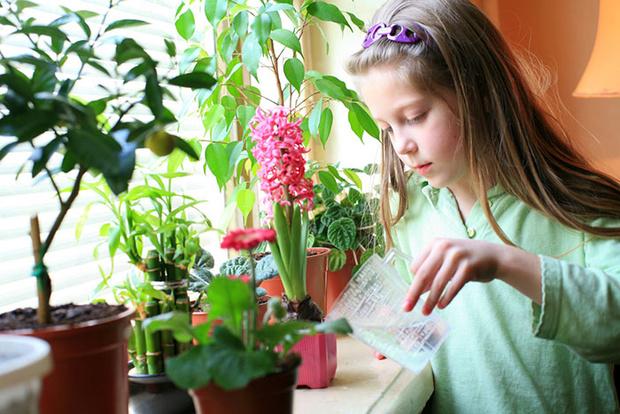 Фото №2 - Играем в садовников: практическая ботаника для детей