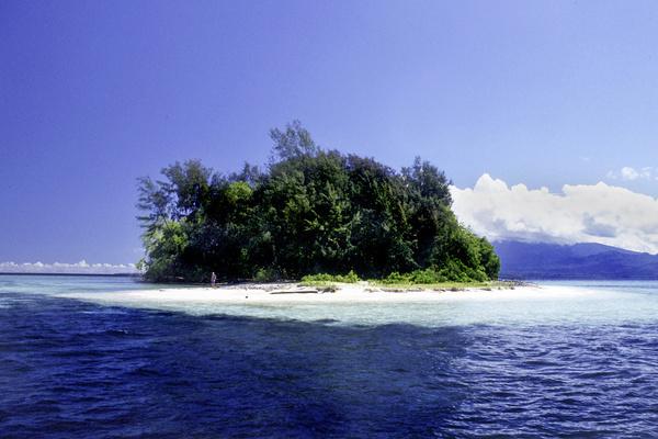Фото №1 - Тест: человек или остров?