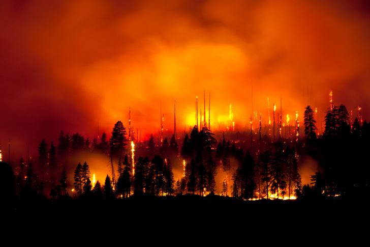 Фото №1 - Инфографика: как изменения климата отразятся на новом поколении