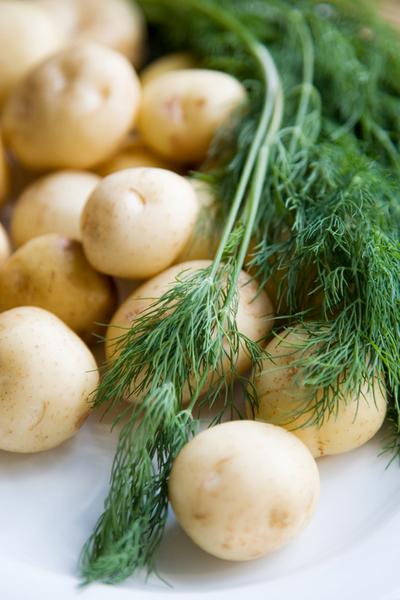 Молодой картофель рецепты