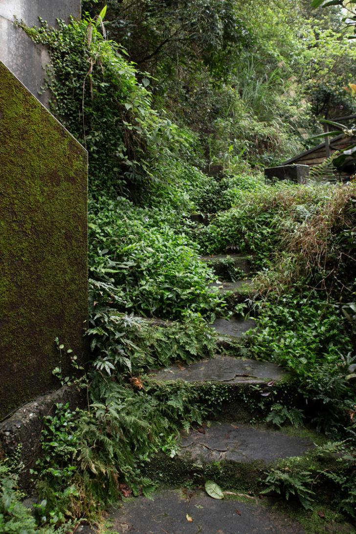 Фото №2 - Shu Shu House: уединенный гестхаус в горах Тайваня