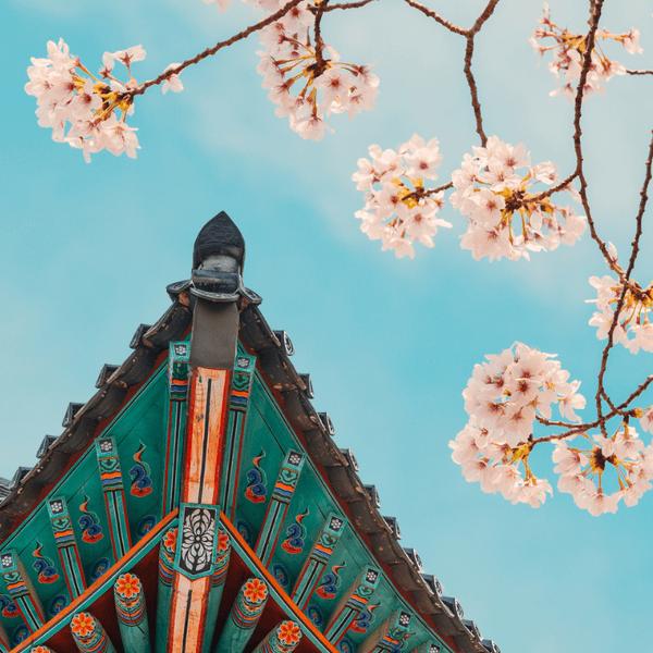 Фото №1 - Гадаем на корейских пословицах: получи важную подсказку от судьбы