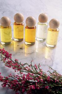 Фото №5 - Школа парфюмеров