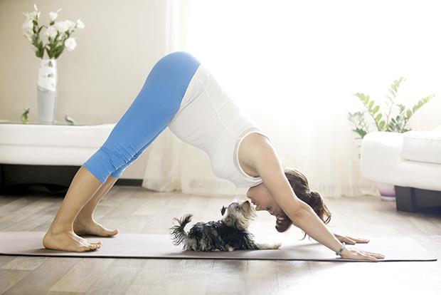Фото №1 - Йога для будущих мам: чем полезна?