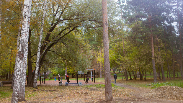 Фото №1 - В Новосибирске разработали интерактивную карту с благоустроенными парками и дворами
