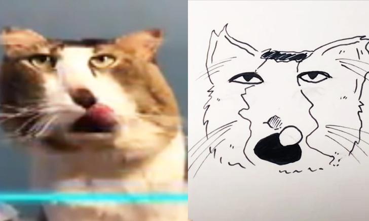 Фото №1 - Художница применила фильтрTime Warp к видео с котами и зарисовала то, что получилось (видео)