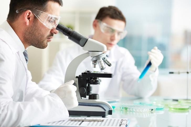 Фото №1 - Ученые открыли новый белок ответственный за оплодотворение
