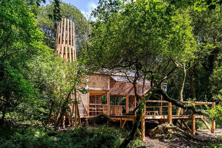 Фото №4 - Деревянная хижина в лесах Корнуолла