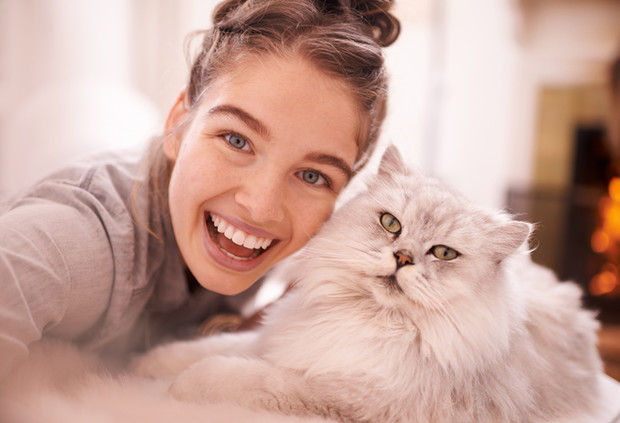 Фото №1 - Как стать счастливой: 12 мудрых советов от вашего кота