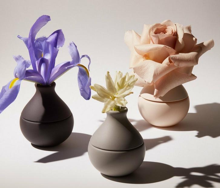 Фото №1 - Вам цветы: новая коллекция цветочных ароматов от Ким Кардашьян