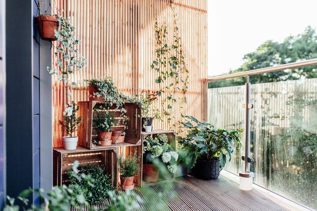 Фото №3 - Готові схеми: як перетворити балкон в круте місце для літнього відпочинку