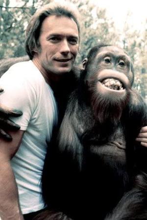 Фото №1 - 10 животных-актеров, которые заслуживают «Оскар»