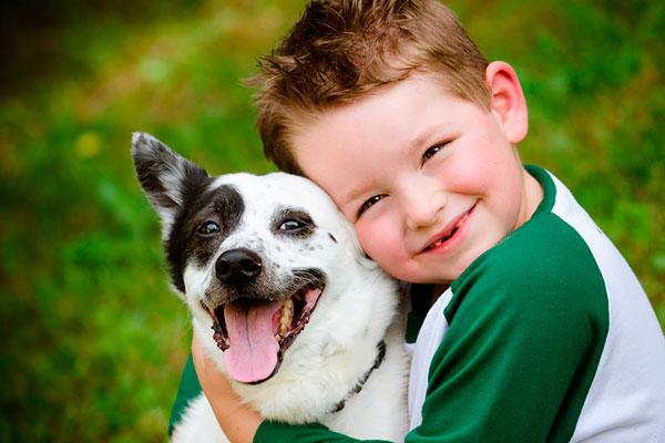 Фото №1 - Ребенок хочет собаку: 5 актуальных вопросов