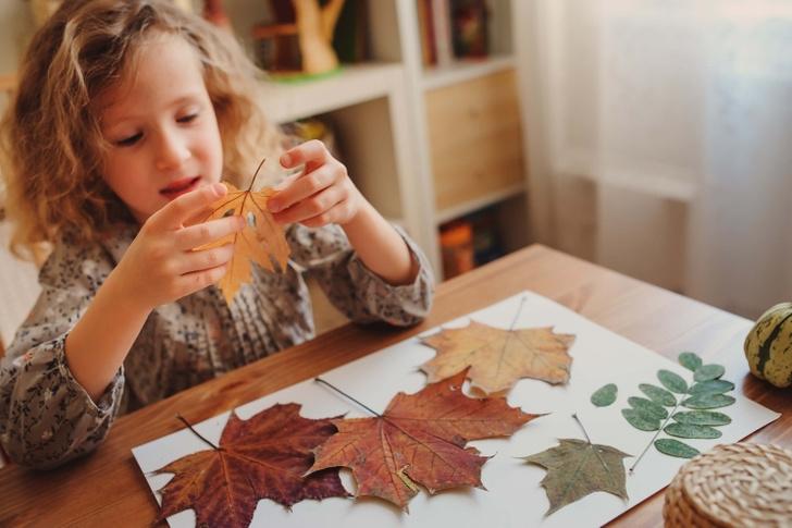 Фото №21 - Детский фотоконкурс «Собираем гербарий»: выбирай лучшее фото