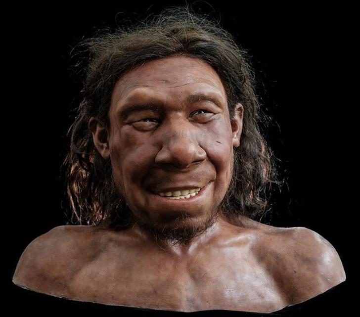 Фото №1 - Восстановлена внешность «старейшего» неандертальца