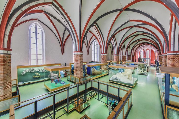 Фото №5 - Есть всюду свет: новая жизнь бывших церквей