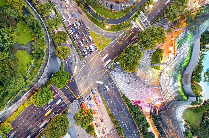 Фото №4 - Сингапур принял «Зеленый план до 2030 года»