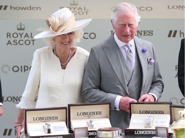 Фото №2 - Вместо тысячи слов: как принц Чарльз проявляет чувства к герцогине Камилле