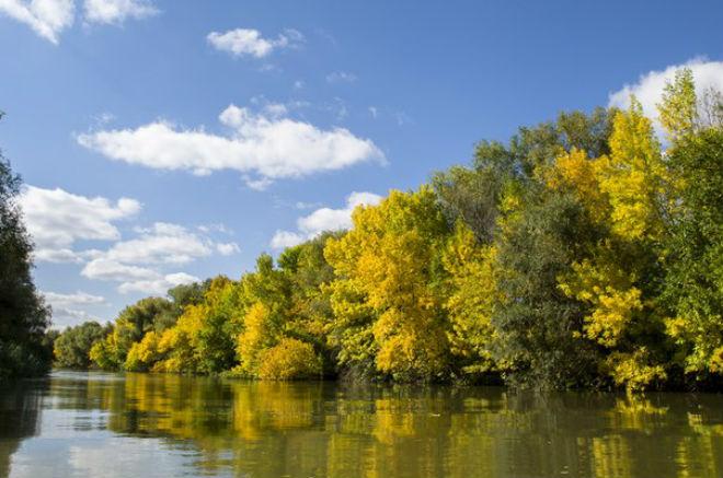 Фото №7 - 10 мест в Астрахани, где осенью – настоящая сказка!