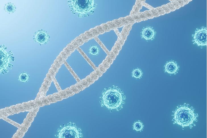 Фото №2 - Ученые обнаружили следы эпидемии коронавируса, терзавшей жителей Восточной Азии тысячи лет назад