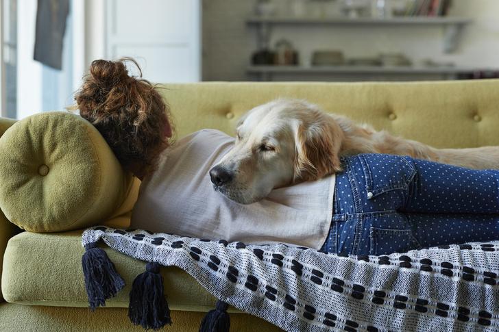 Фото №1 - Почему дневная сонливость может быть тревожным симптомом