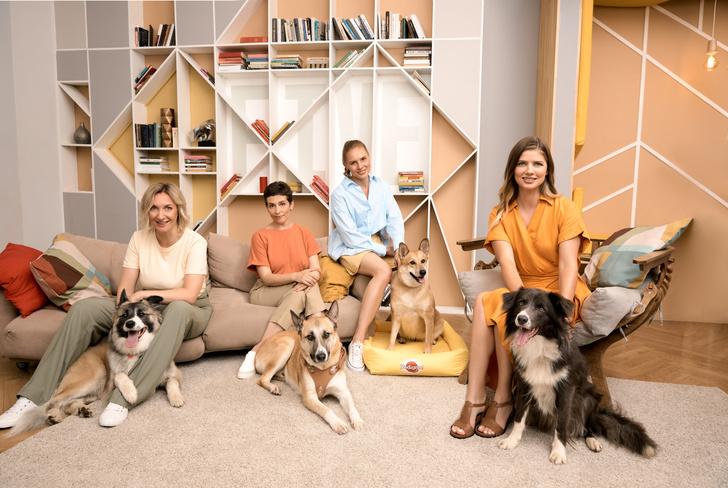 Фото №2 - Подкаст, который меняет жизнь: PEDIGREE®️ и Настя Задорожная представили новый сезон подкаста «Пойдем домой»