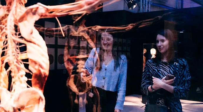 Выставка BODY WORLDS: небывалый ажиотаж и положительные отзывы посетителей