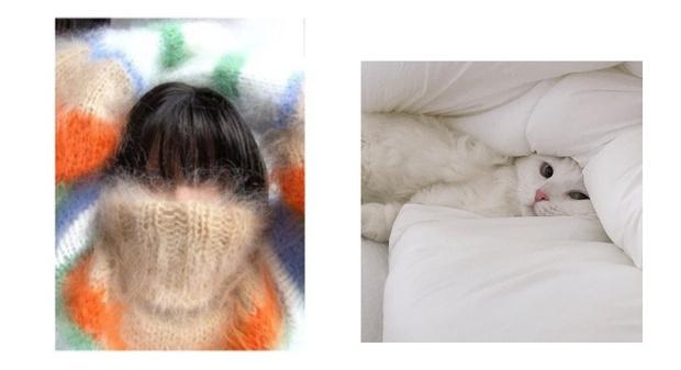 Фото №4 - Как ухаживать за кашемировыми свитерами, чтобы они дольше служили