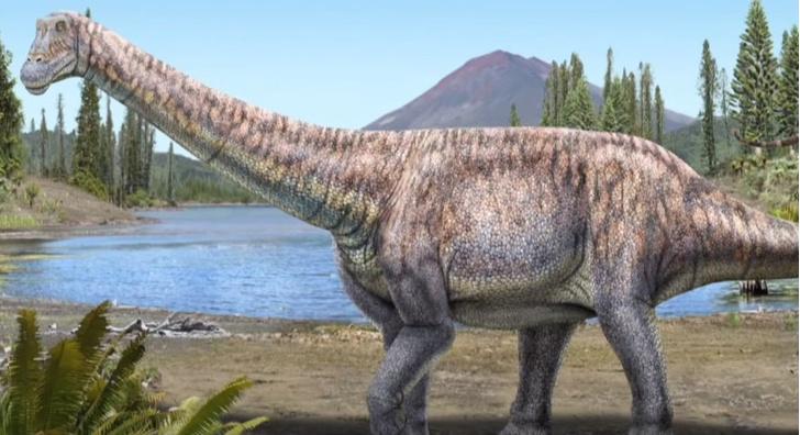 Фото №1 - В Чили обнаружены останки неизвестного ранее динозавра