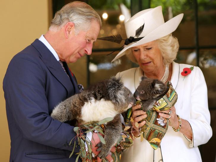 Фото №17 - Любовь сквозь годы: 20 самых трогательных фото принца Чарльза и герцогини Камиллы